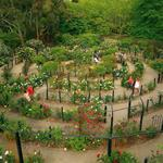 Click to view album: Attractions, Parks and Gardens