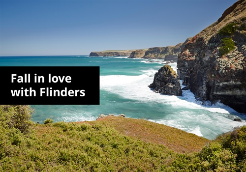 Fall in love with Flinders