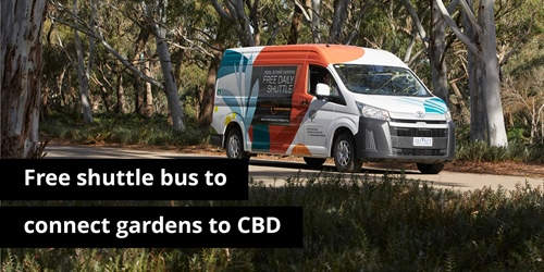 Royal Botanic Gardens Victoria launches free shuttle bus service to connect Gardens to CBD.