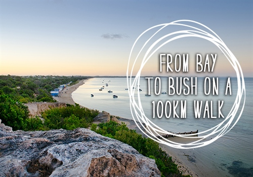 From the bay to the bush -  Mornington Peninsula's 100km walk