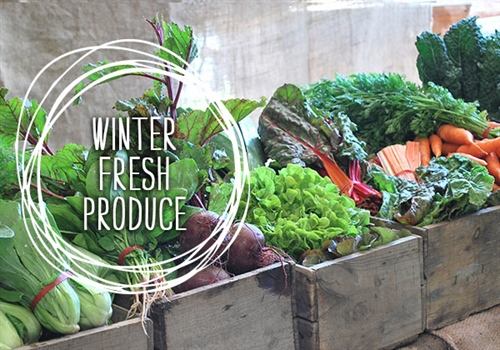 Winter Fresh Produce