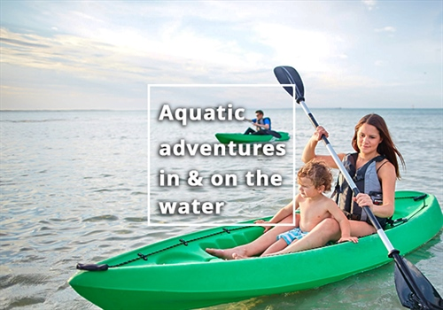 Aquatic adventures in and on the water