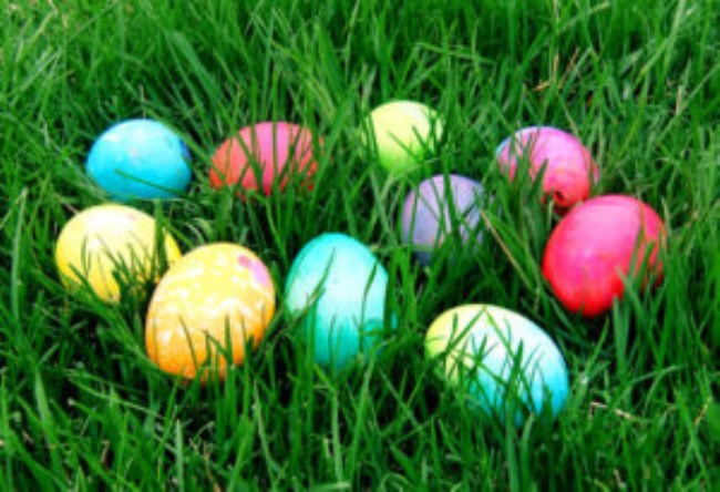 Find whats on the official tourism website of the mornington easter egg hunt green olive at red hill negle Choice Image