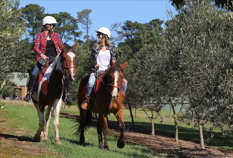 Horseback riding Mornington Peninsula special offer