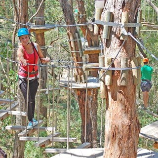 Tree Surfing Mornington Peninsula special offer