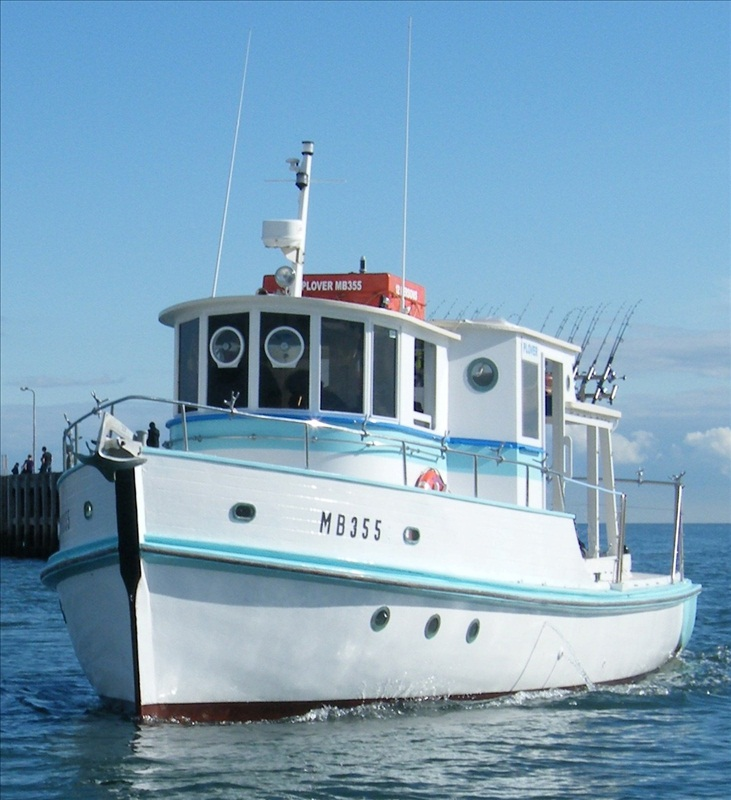 Bay fish n trips the official website of mornington for Fishing boat trips